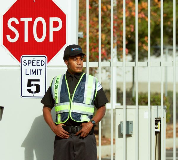 Crossing Guard Services Traffic Control